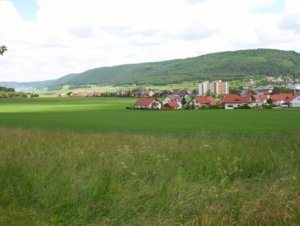 Wurmlingen from the farmlands